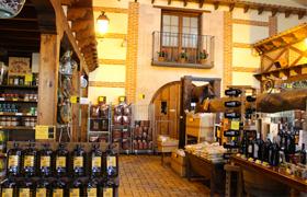 Palacio de Bornos - D.O. Rueda - El viñedo
